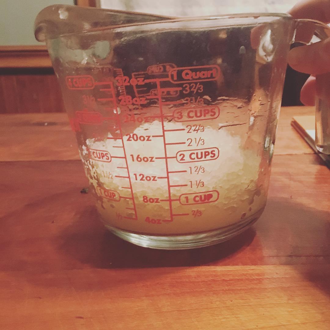 hongo de kefir de agua
