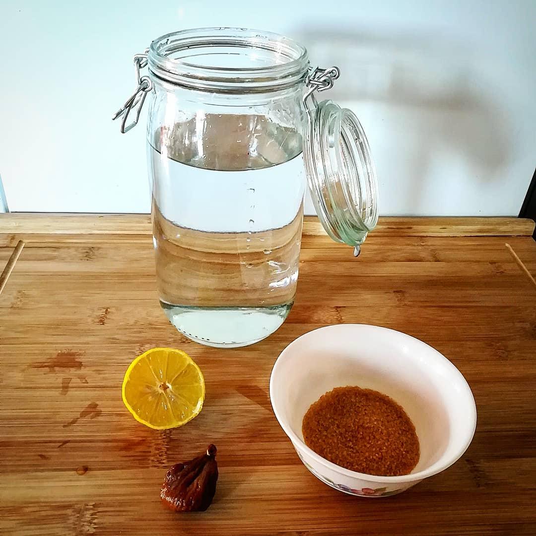 kefir probiotico casero