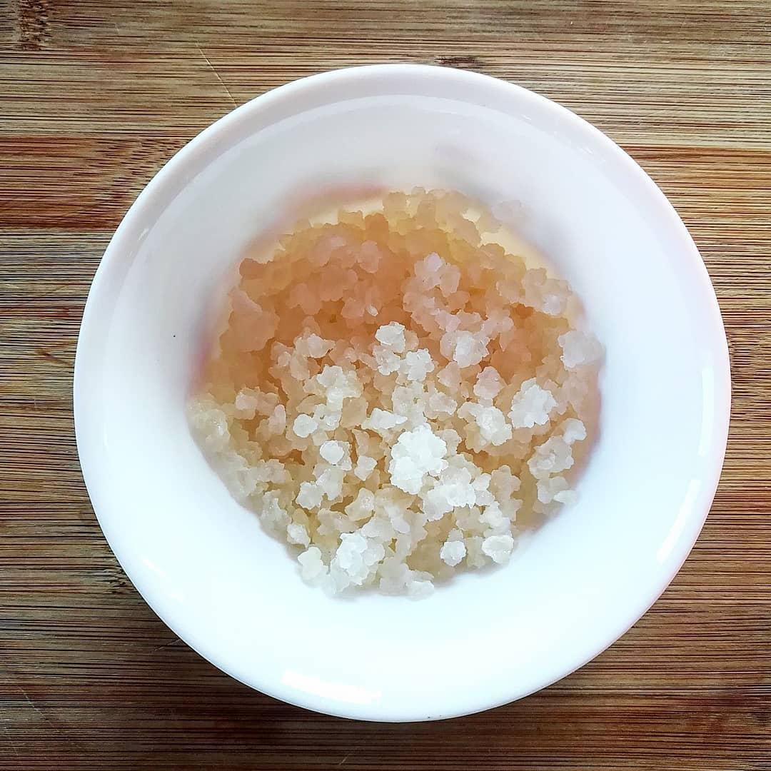 hongo del probiotico kefir