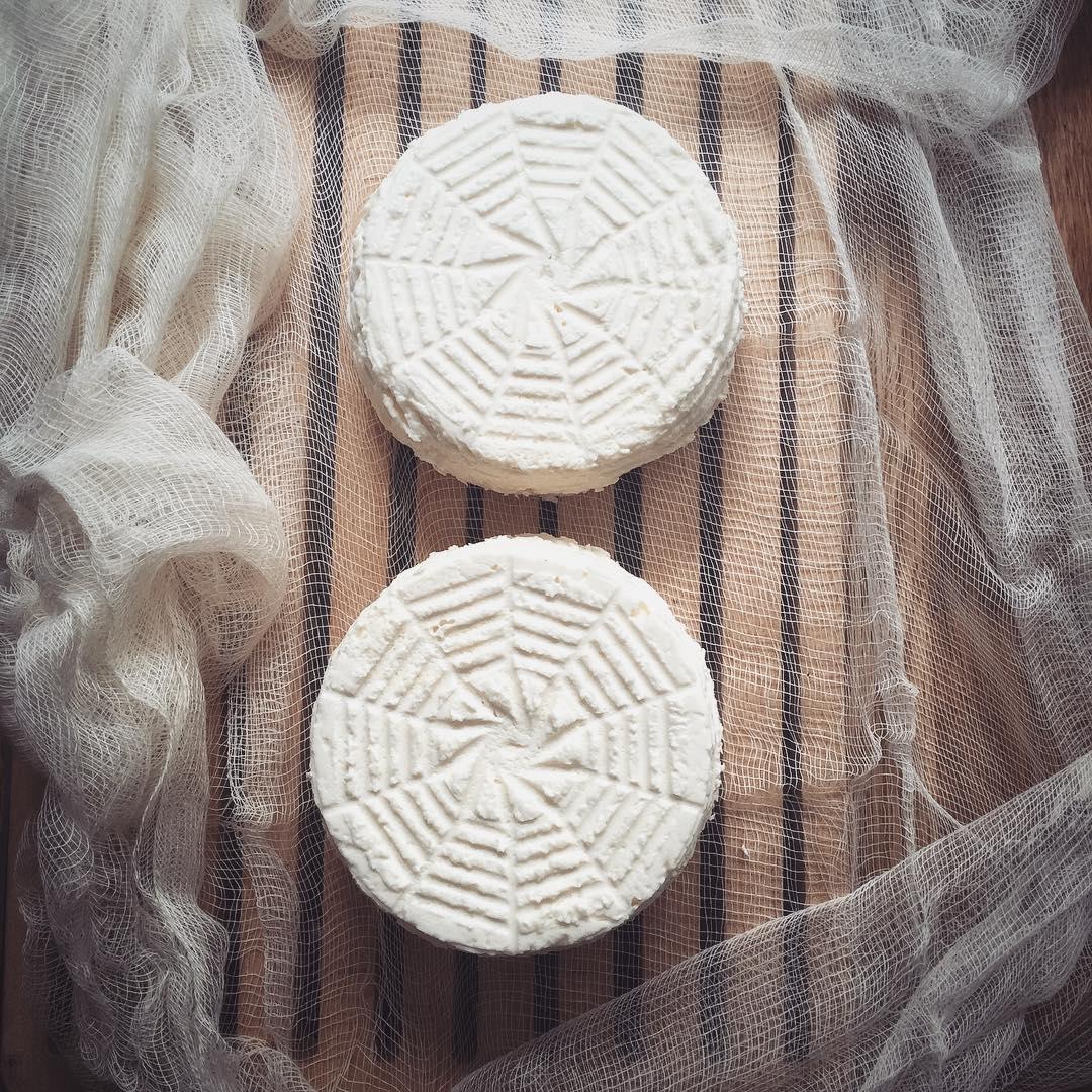 dos quesos de kefir