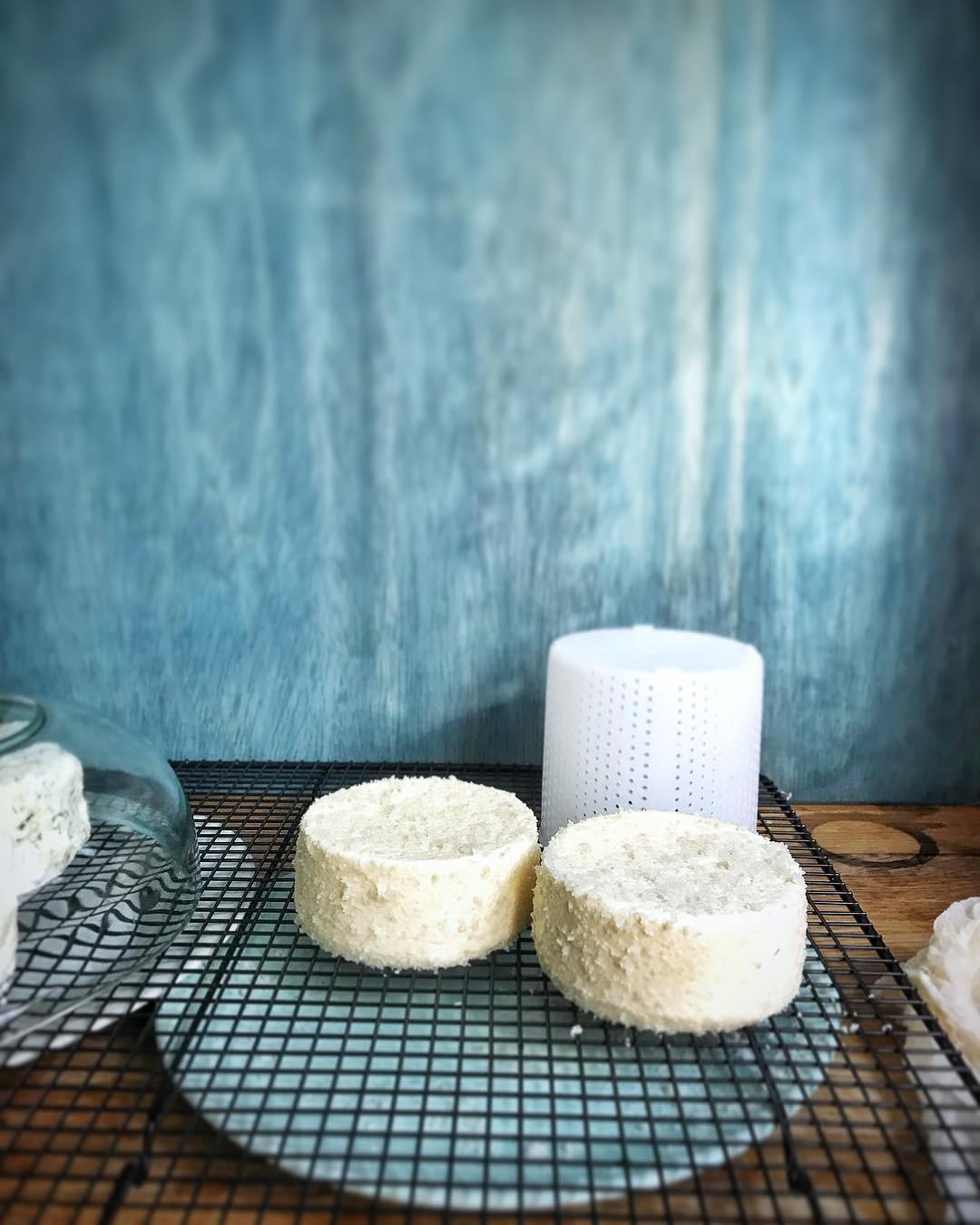 quesos de kefir casero